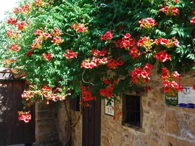 casa turismo rural turismo rural cuatro esquinas10 1